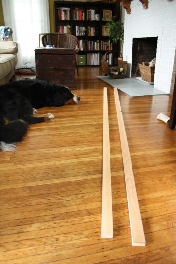 Cedar boards. And a very uninterested dog.