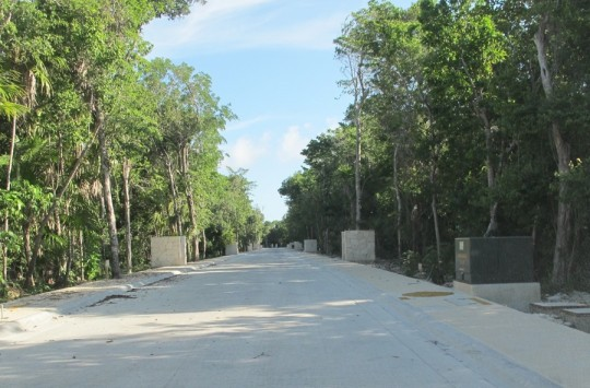 Roadway, check. Electrical run, check. Uncleared tropical lots, check.