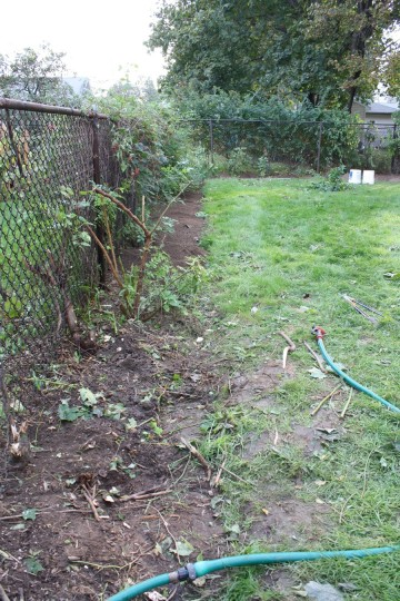 More fence, fewer weeds.