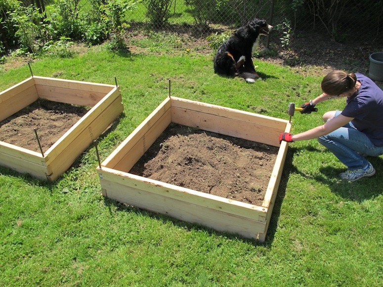 Backyard Garden Boxes : How To Use A Tiller (And Other Gardening Planter Details)  merrypad