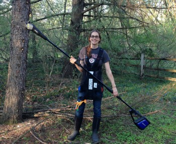 Clearing dead branches with the help of a battery-operated electric pole saw.