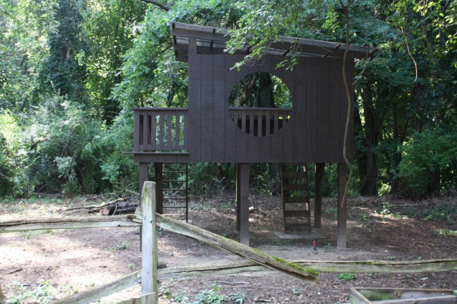 Our modern treehouse with slanted roof and big, round window.
