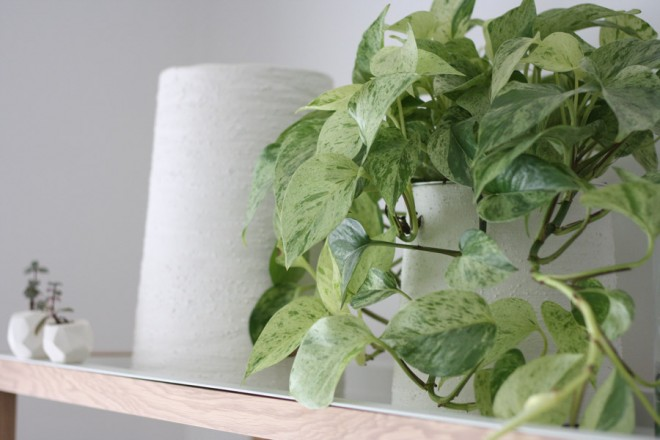 Textured tapered planters.