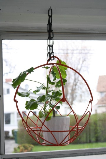 A finished hanging basket (with IKEA pot and geranium).