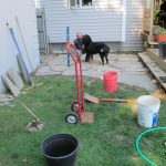 Finishing the DIY flagstone patio.