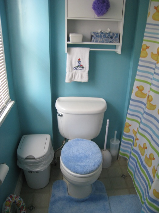 Bathroom before, circa 2009.