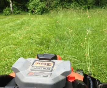 WTG, Black and Decker. The little 36V mower rages through tall grass.