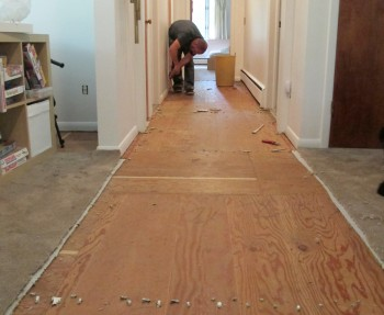 Removing the carpet in the hallway.