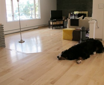 Ta-da, new maple flooring throughout our living room!