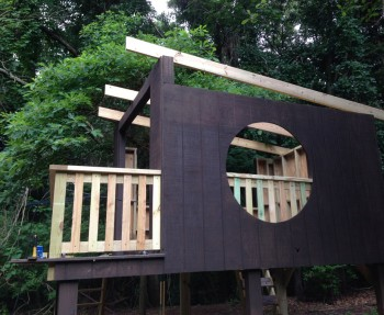 Our modern treehouse, with the raw wood railing.